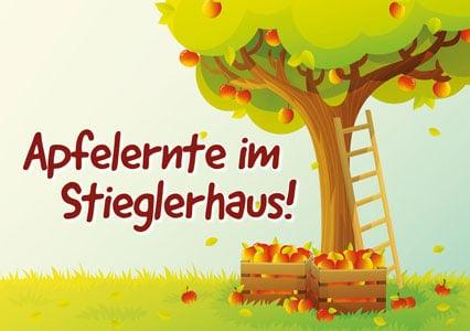 Apfelernte im Stieglerhaus