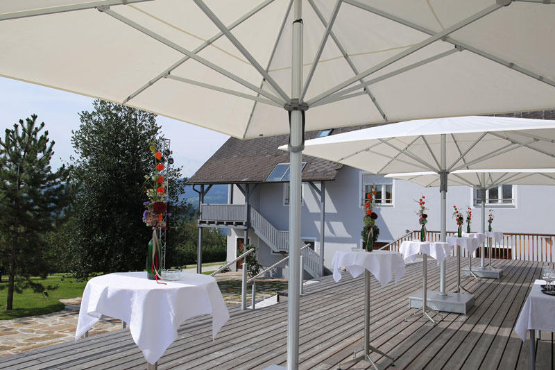 Stieglerhaus Garten